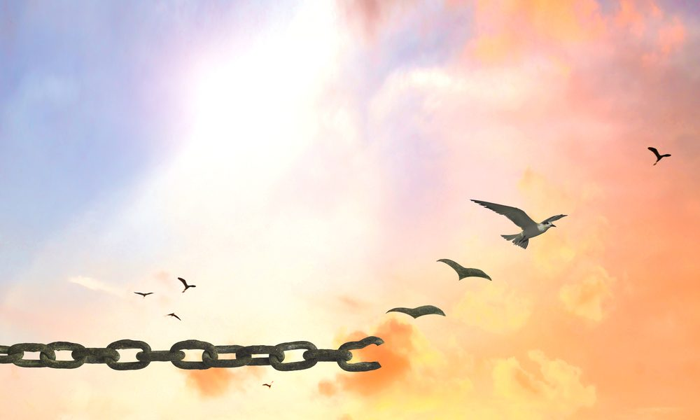 Image of birds breaking free from chains