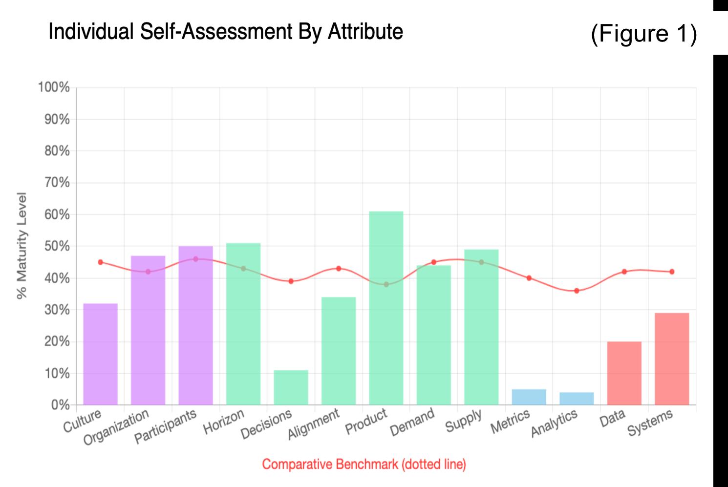 Maturity Model assessment output