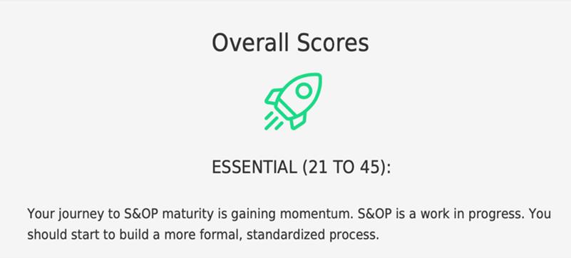 Maturity model sample output